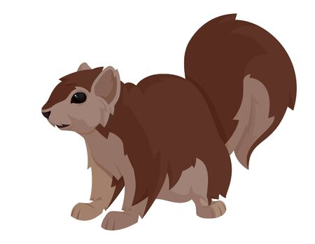 critters: Vector illustration of a squirrel