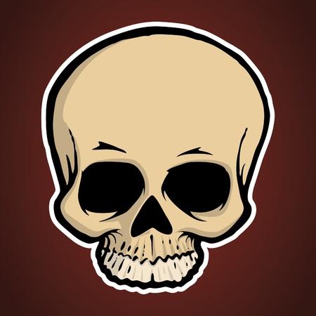 Vector cartoon illustration of a human skull. Illustration