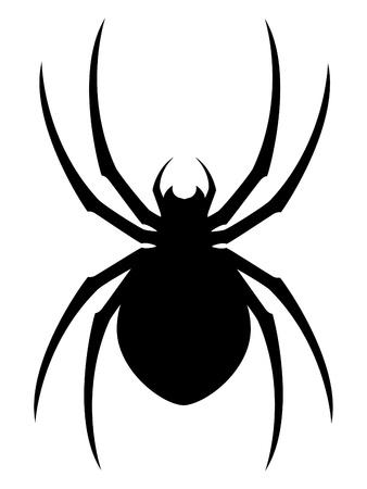 halloween spider: Vector Spider