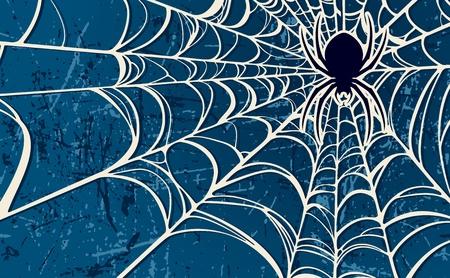 Vector Spider Background
