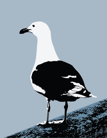 Vector Seagull on a Pier (Bird is NOT live traced) Vector