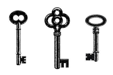 oude sleutel: Drie Vector Skeleton Keys