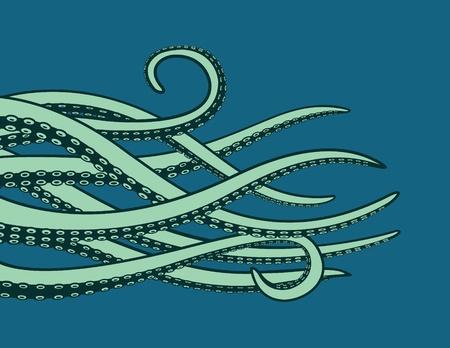 pulpo: Tentáculos