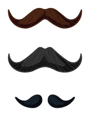 영어 콧수염