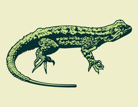 blooded: Vector Lizard.