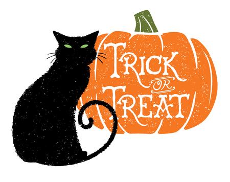 Trick or Treat Cat 2