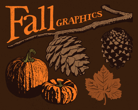 fall harvest: Fall Vector Graphics. Five vector fall graphics two pine cones, two pumpkins, and a leaf, each on a separate layer. Illustration
