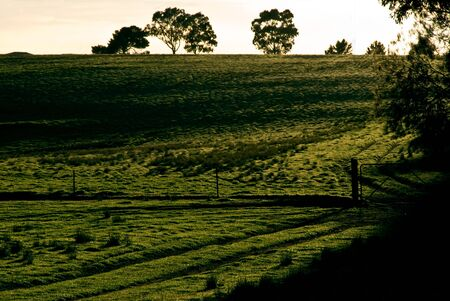 An empty Paddock divided by a fence and gate at sunrise.