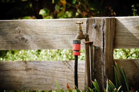 Garden tap connected to a wooden fence with a hose attached.