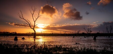 Gorgeous sunset over the wetlands  Stock Photo - 17692703