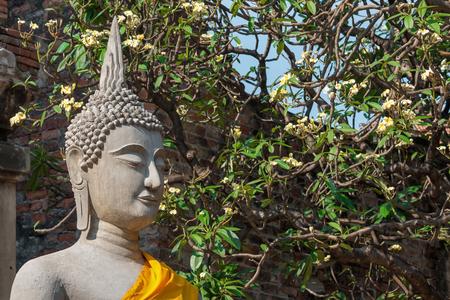 White Buddha statue at Wat Yai Chaimongkol, Ayutthaya, Thailand. Reklamní fotografie