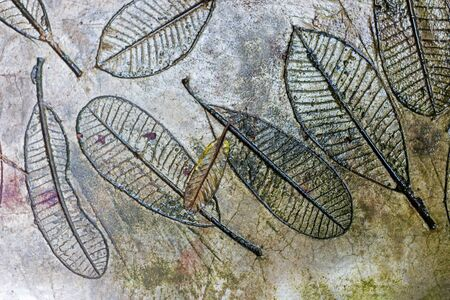 Surface of cement concrete with leaves background. Reklamní fotografie