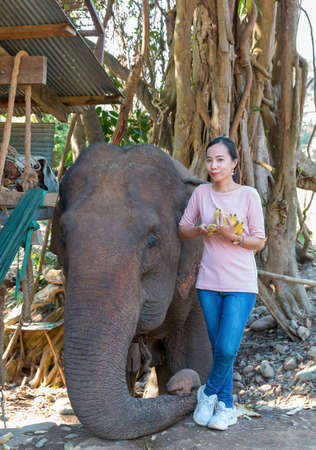 Mae Hong Son, Thailand - february 9, 2019: Thai woman with elephant at Long Neck village Baan Huay Sua Thao. Redakční