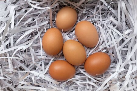 Group of eggs straw paper.