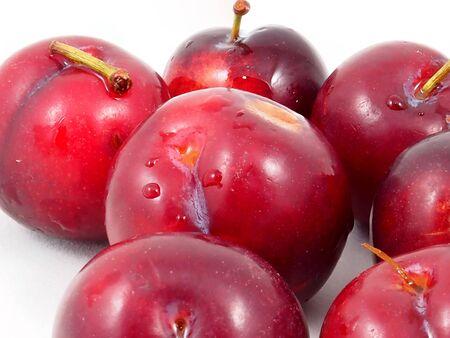 prunus: Prunus