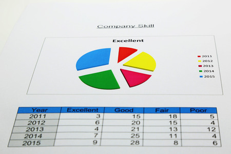 responsibility survey: pie chart to separated of company skill