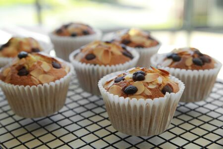chocolate chip: Homemade apricot chocolate chip almond slice muffins on cooling rack
