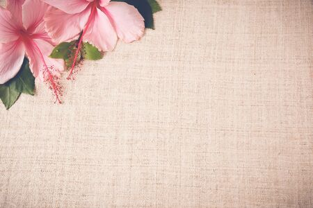 Pink Hibiscus flowers on linen, copy space background, selective focus, vintage tone Banco de Imagens - 50690513