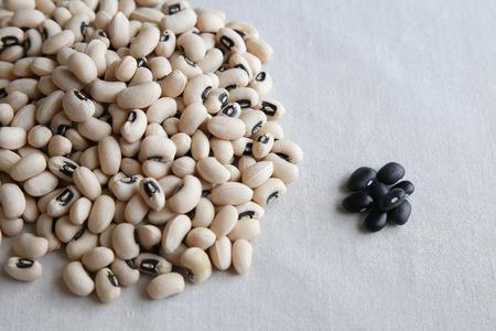 turtle bean: Black-eyed beans VS Black beans