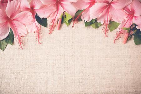 ibiscus: Ibisco rosa fiori su lino, Copy Space, messa a fuoco selettiva, suono vintage Archivio Fotografico
