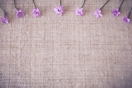 onion flowers: Pink onion flowers on linen, copy space background, selective focus, toning Stock Photo