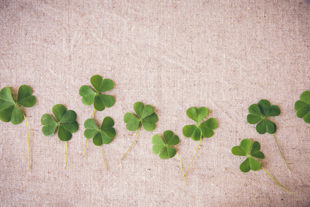 clovers: Fresh clovers leaves on linen, St Patricks day copy space background
