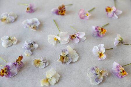 edible: Crystallized and fresh edible flowers on parchment paper