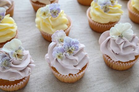 sugared: Purple and yellow cupcakes with sugared edible flowers
