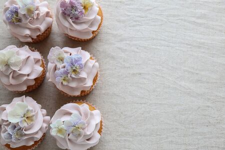 sugared: Purple cupcakes with sugared edible flowers copy space background