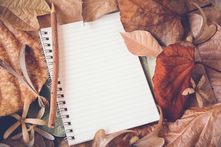 Notebook with leaves mock up, Autumn toning background