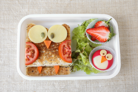 Owl healthy sandwich, fun lunch box for kids 版權商用圖片