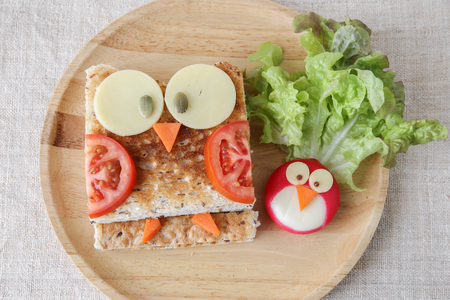 Owl healthy sandwich, fun food art for kids