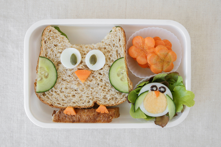 Owl healthy sandwich, fun lunch box for kids Stock Photo