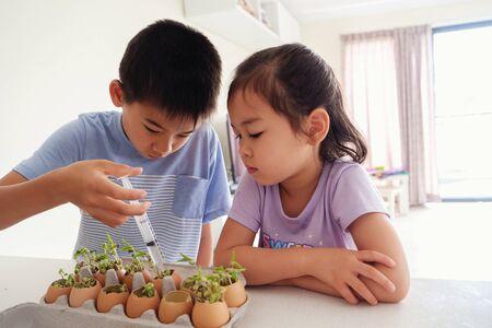 Mixed Asian children watering seedling plant in eggshells,, eco gardening,  montessori, education, reuse concept Stock fotó