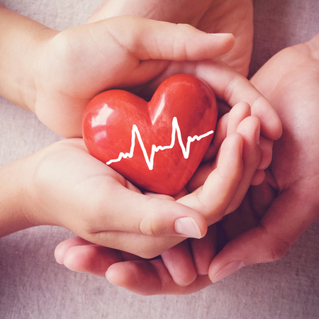 Adult and child hands holding red heart, health care, organ donation, family insurance concept Stockfoto