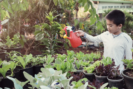 young tween asian boy watering plants in reuse old plastic containers, eco, reuse, montessori education concept Stock fotó
