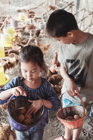 young children collecting eggs, homeschool education concept, Easter activity for kids