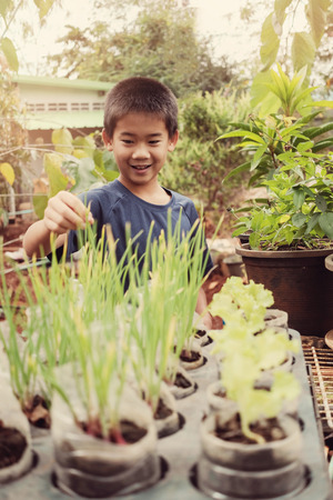 Young tween asian boy picking scallion in reuse old plastic containers, eco, reuse, montessori education, homeschool concept Banco de Imagens