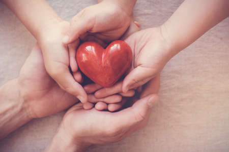 hands holding red heart, health insurance, donation concept Stockfoto