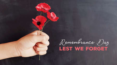 Hand holding red poppy flowers, remembrance day, Lest we forget