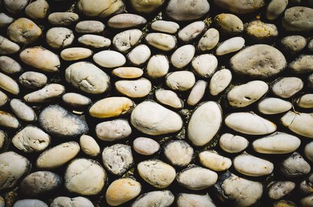 texture of beautiful stone on walk way in garden.