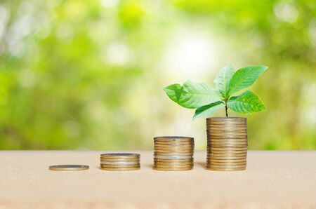 coins stacking with green leaves plant growth up on top coin on wooden board against green nature blur background. financial and saving concept.