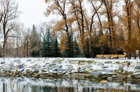 Benches in the park in winter time Stock Photo