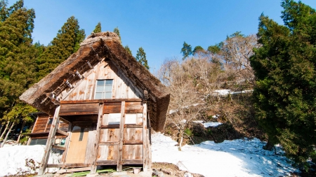 Gassho House, Shirakawago, Japan