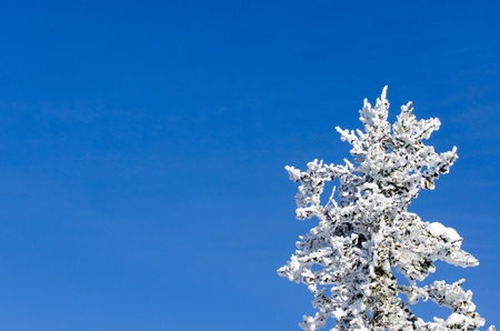Freezing pile on blue sky background photo