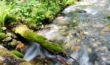 Cascade waterfall with mossy rocks