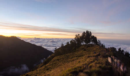 Landscape of crater rim with  trees and  sunset background, Indonesia