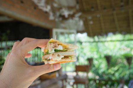 tuna mayo: hand hold club sandwich , blur background