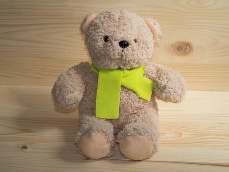 furry stuff: lovely bear doll and  citrine scarf,wooden background
