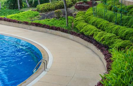 swimming bird: Swimming pool beside garden at hotel, bird eye view Stock Photo